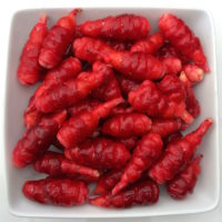 Tubers of the oca (Oxalis tuberosa) variety 'Mocrocks'