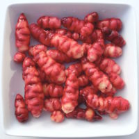 Tubers of the oca (Oxalis tuberosa) variety 'Black'