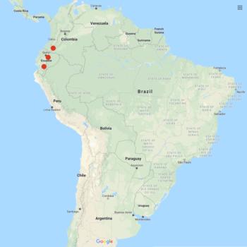 Solanum andreanum distribution map
