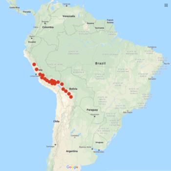 Solanum candolleanum distribution map