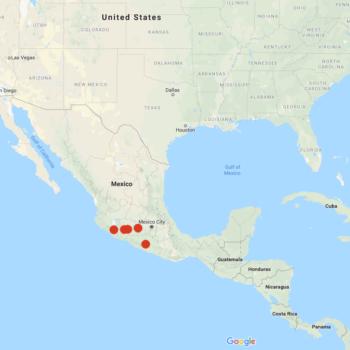 Solanum hougasii distribution map