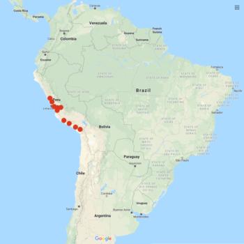 Solanum medians distribution map