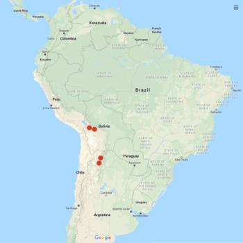 Solanum okadae distribution map