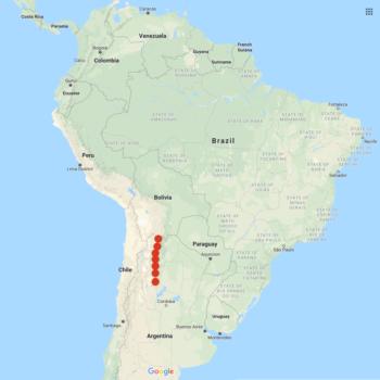 Solanum vernei distribution map