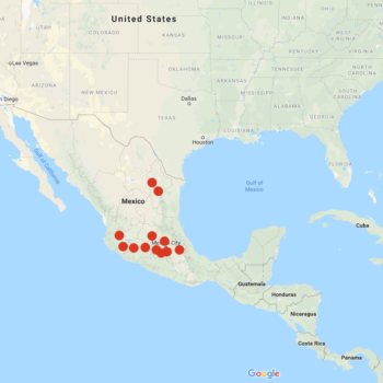 Solanum verrucosum distribution map
