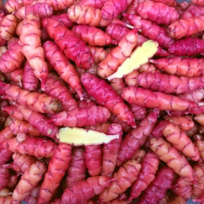 Tubers of the oca (Oxalis tuberosa) variety 'Sunset'